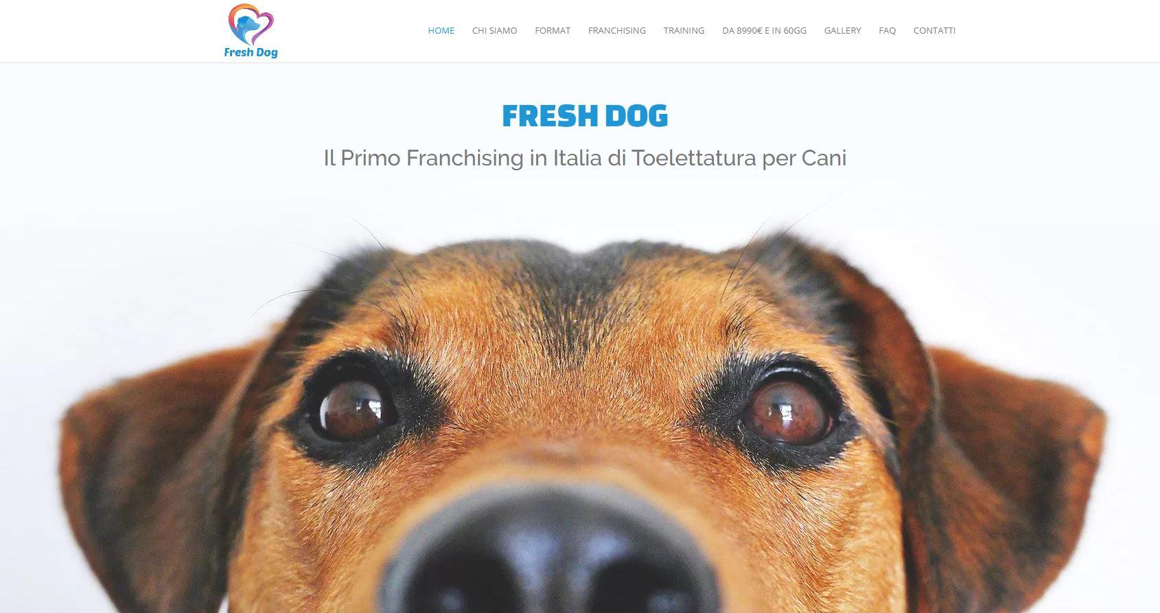 Fresh Dog toelettatura cani franchising